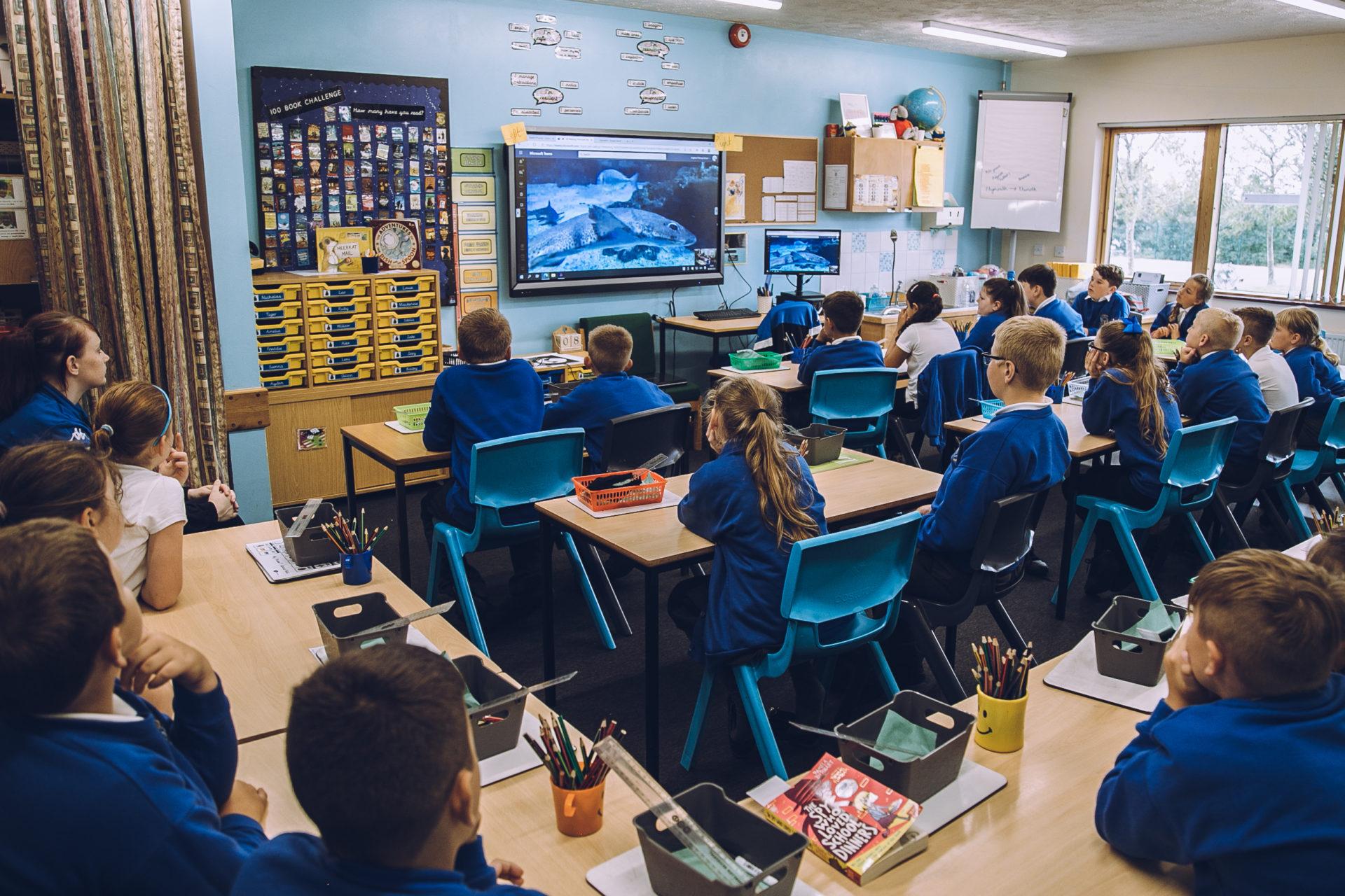 classroom aquarium